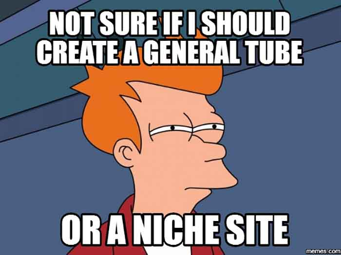 What I Should Create A General Tube Or An Adult Niche Site
